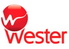 Бак расширительный для отопления Wester (Россия)
