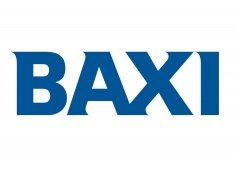 Дымоход Baxi